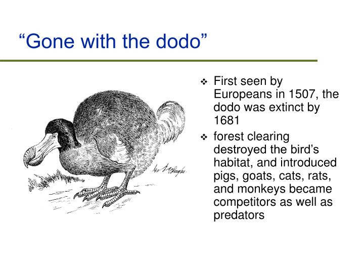 """Gone with the dodo"""