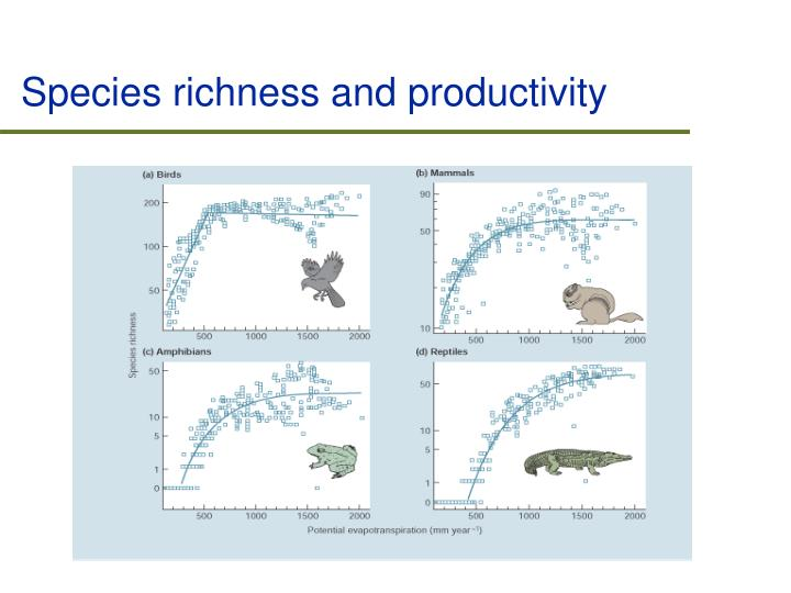 Species richness and productivity