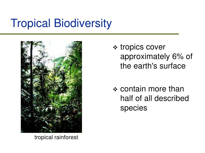 Tropical Biodiversity