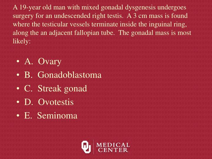 A 19-year old man with mixed gonadal dysgenesis undergoes surgery for an undescended right testis.  A 3 cm mass is found where the testicular vessels terminate inside the inguinal ring, along the an adjacent fallopian tube.  The gonadal mass is most likely: