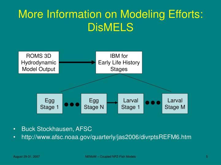 ROMS 3D Hydrodynamic Model Output