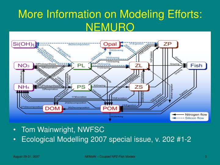 More Information on Modeling Efforts: