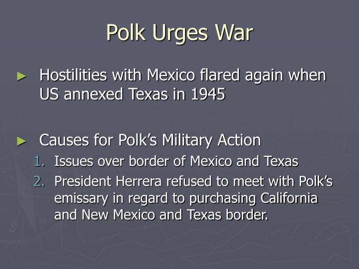 Polk Urges War