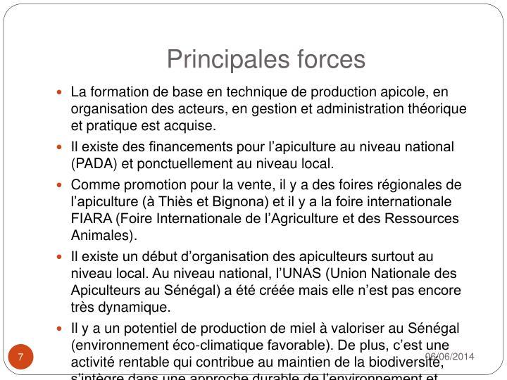 Principales forces
