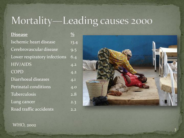 Mortality leading causes 2000