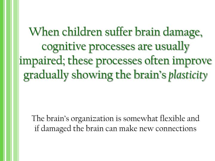 When children suffer brain damage, cognitive processes are usually impaired; these processes often improve gradually showing the brain's