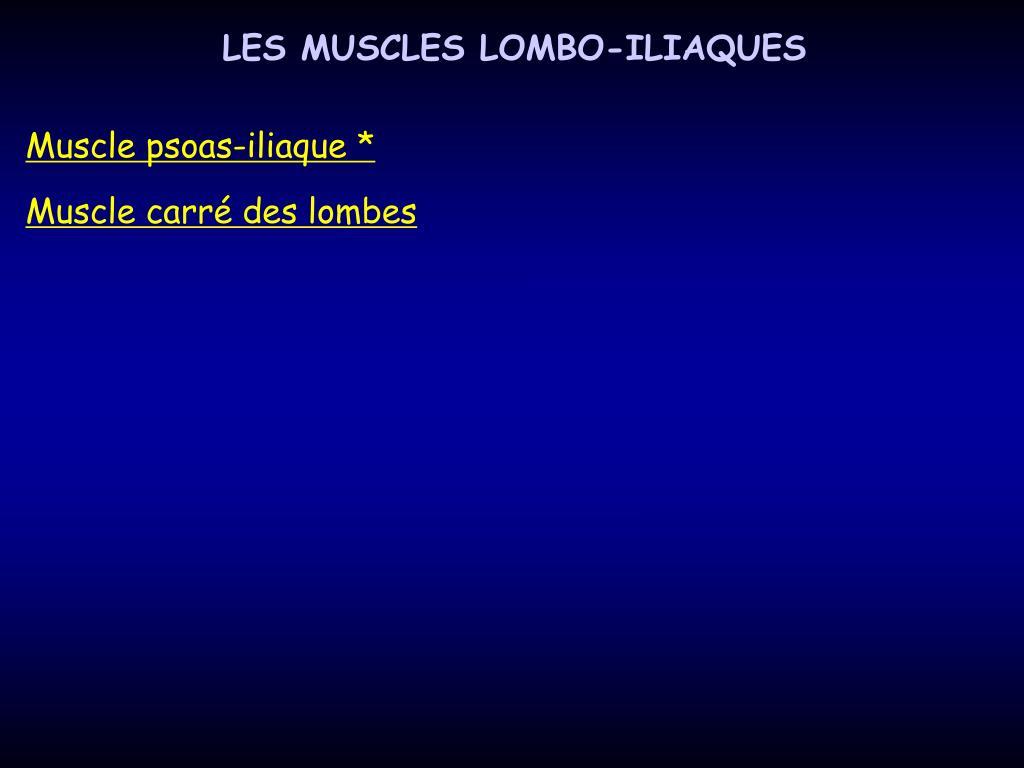 LES MUSCLES LOMBO-ILIAQUES