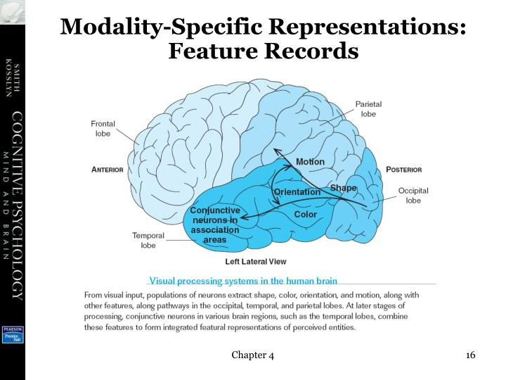 powerpoint presentation on long term memory Slide 2: short-term memory is the section of the memory storage system of  limited capacity that stores information for only a brief amount of.