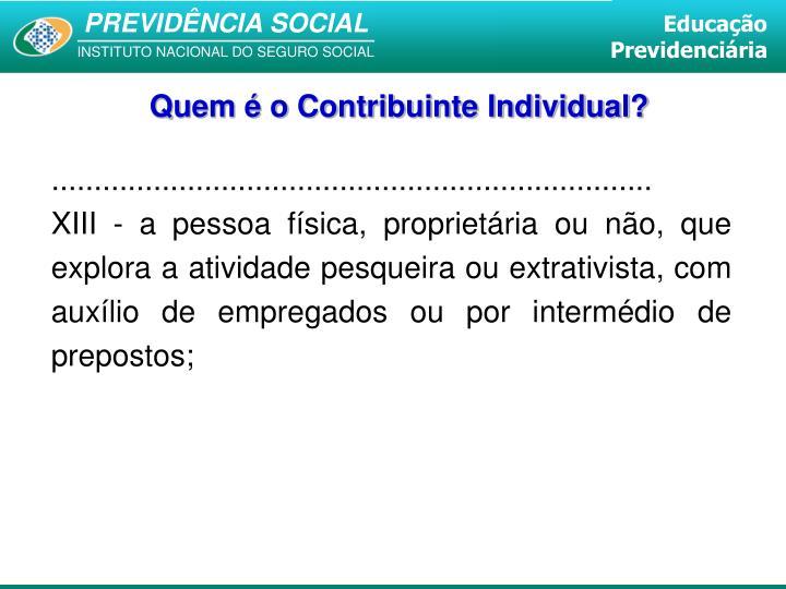 Quem é o Contribuinte Individual?