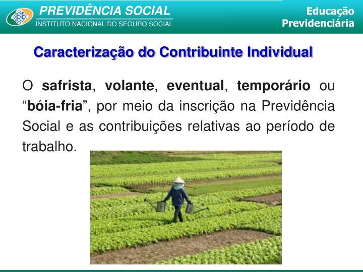 Caracterização do Contribuinte Individual