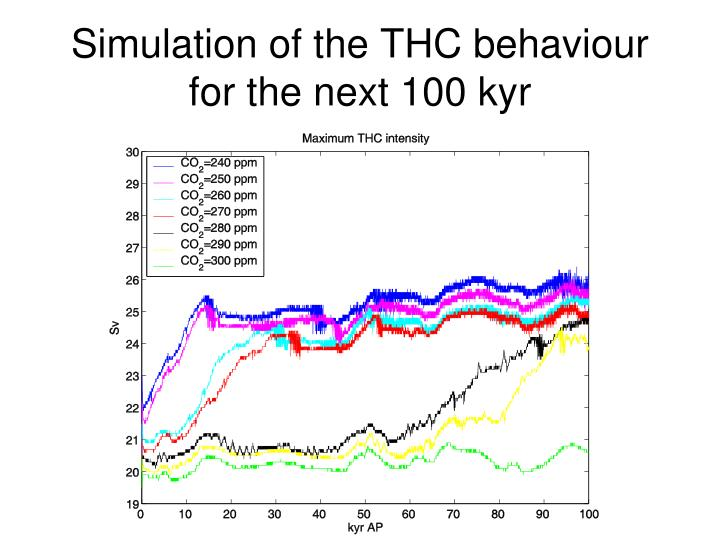 Simulation of the THC behaviour for the next 100 kyr