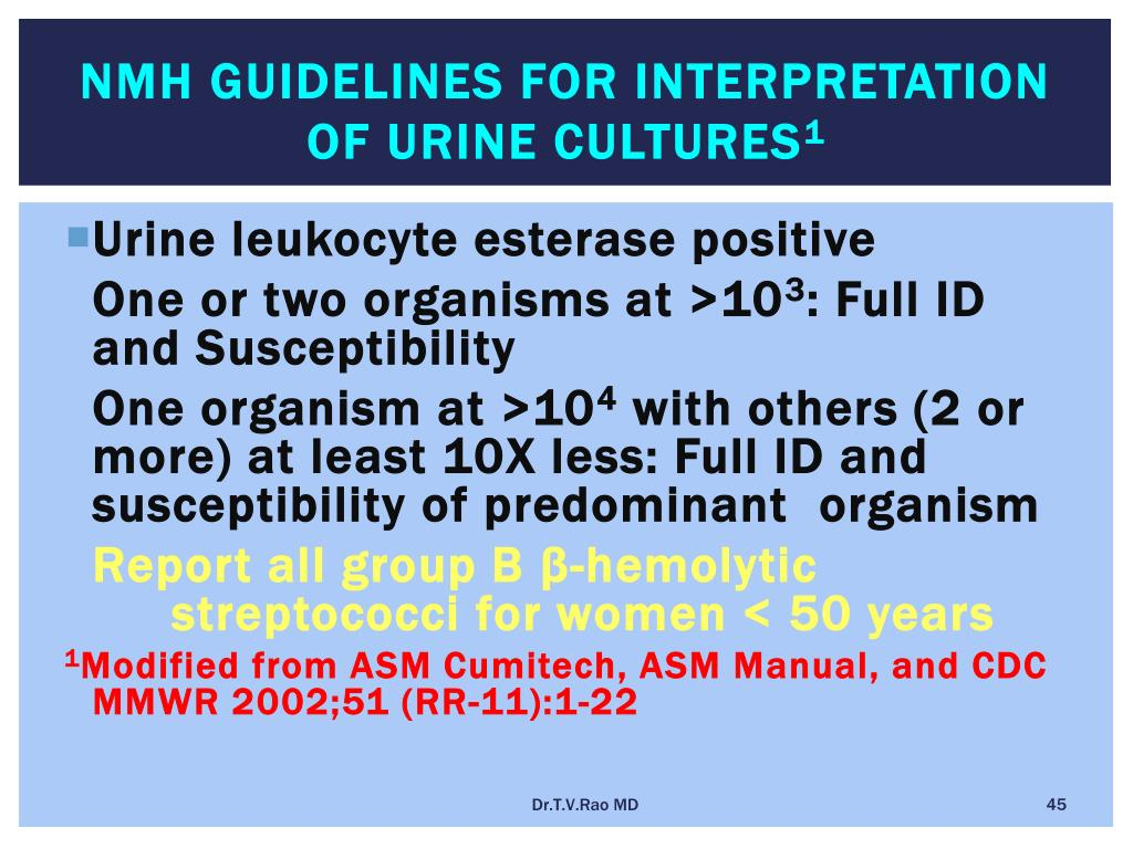 NMH Guidelines for Interpretation of Urine Cultures