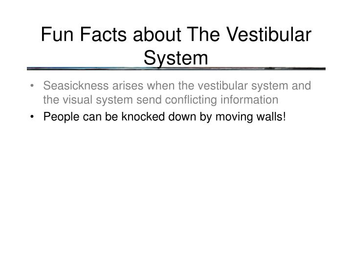 Fun Facts about The Vestibular System