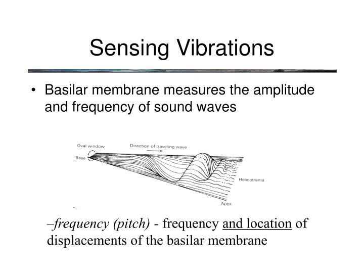 Sensing Vibrations