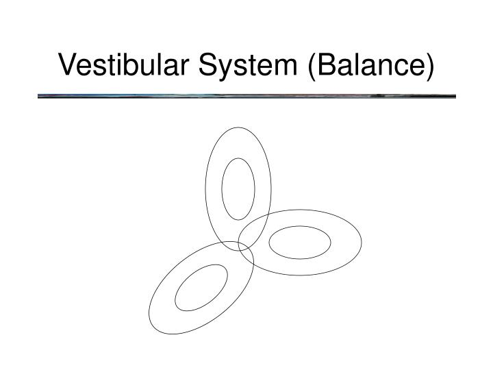 Vestibular System (Balance)