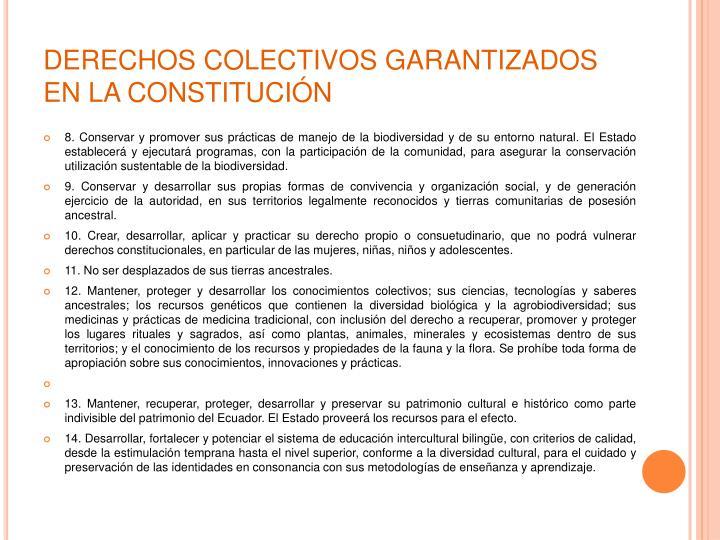 DERECHOS COLECTIVOS GARANTIZADOS EN LA CONSTITUCIÓN