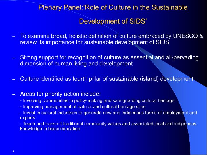 Plenary panel role of culture in the sustainable development of sids