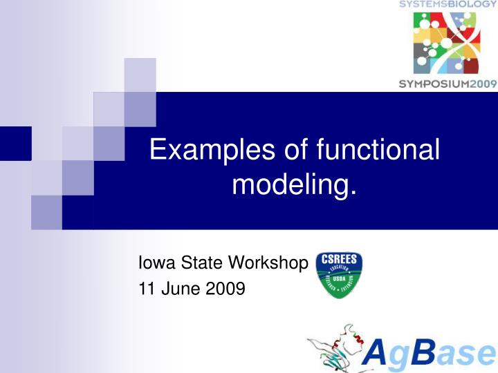 Examples of functional modeling