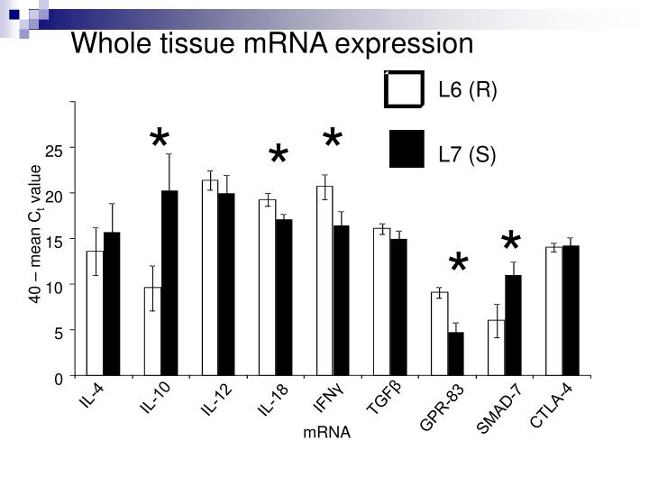 Whole tissue mRNA expression