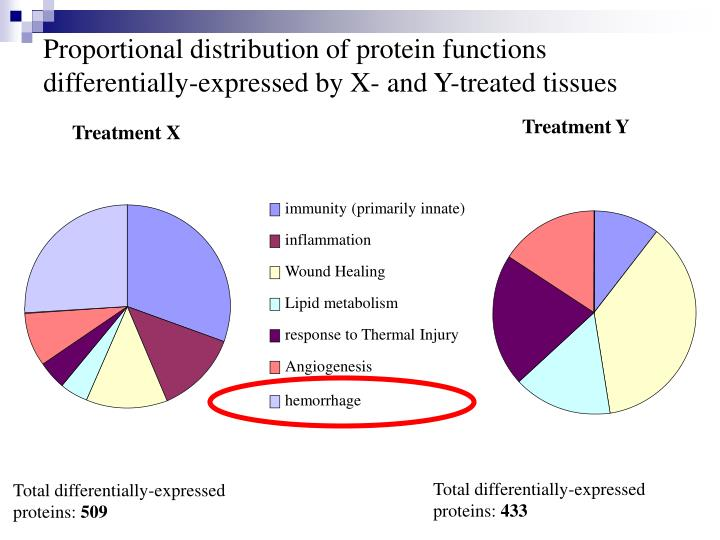 Proportional distribution of protein functions differentially-expressed by X- and Y-treated tissues