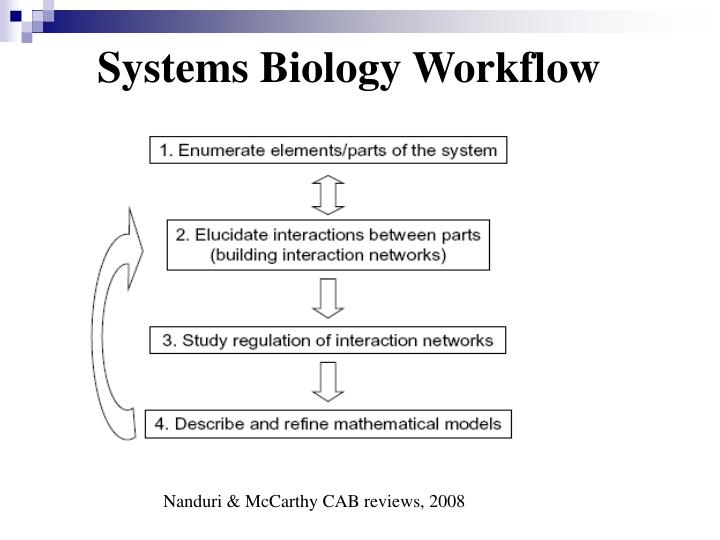 Systems Biology Workflow