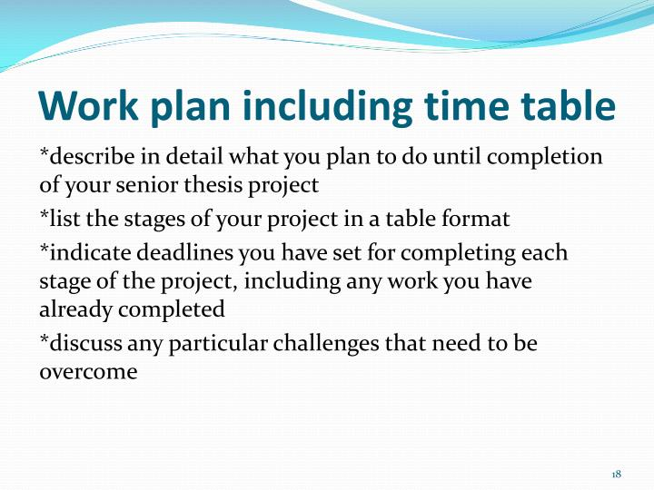 Work plan including time table