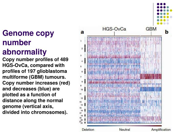 Genome copy number abnormality