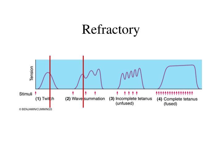 Refractory