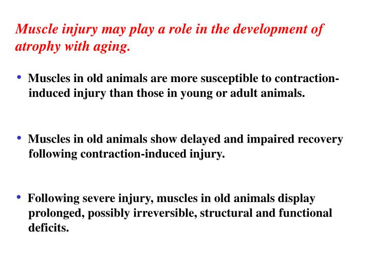 Muscle injury may play a role in the development of