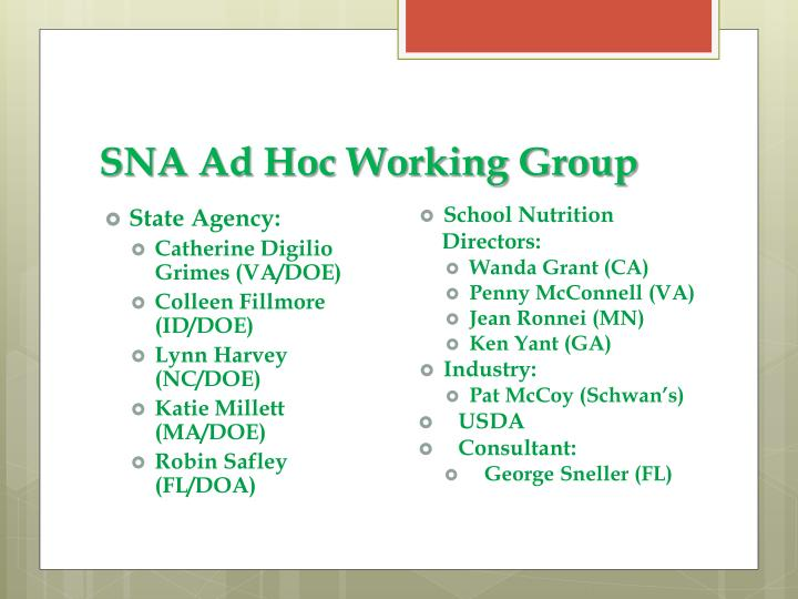 SNA Ad Hoc Working Group