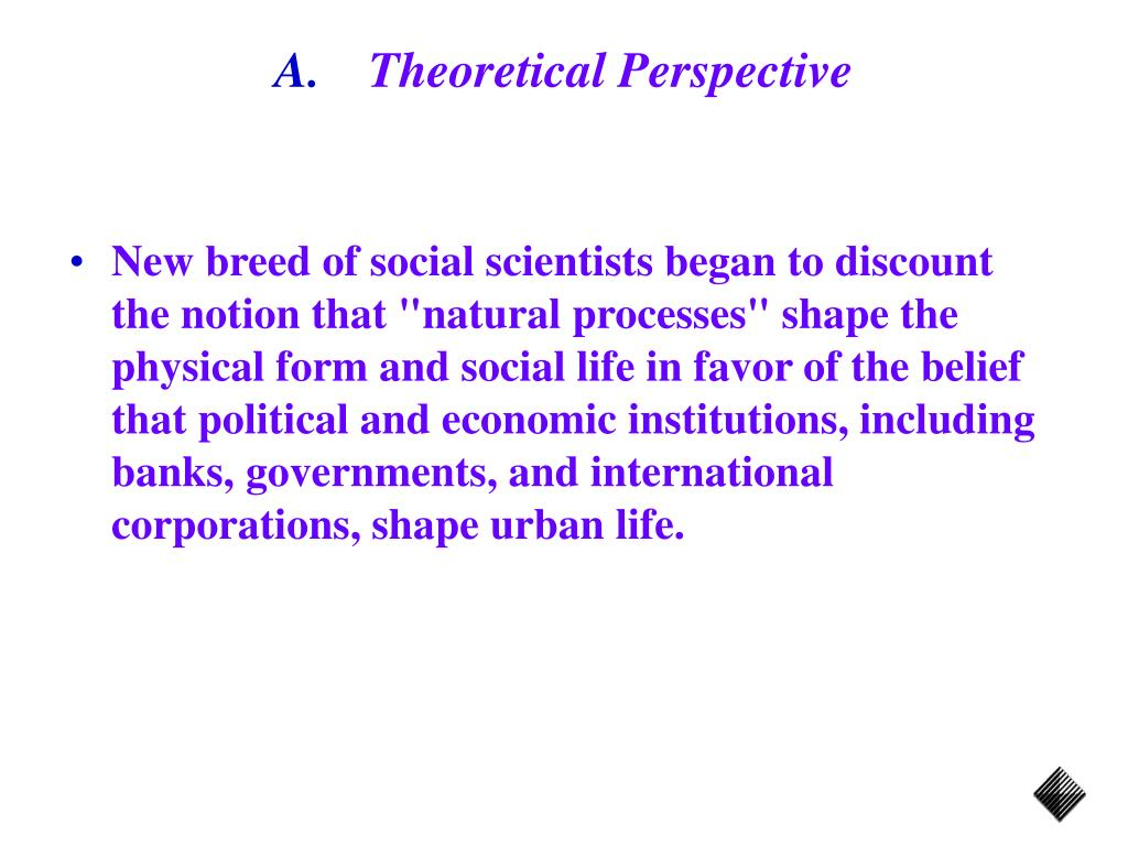 Theoretical Perspective