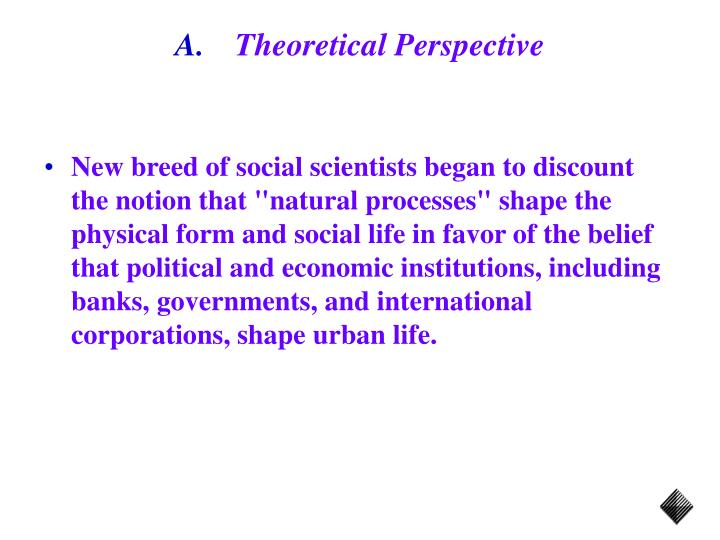 Theoretical perspective3