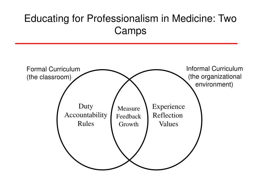 Educating for Professionalism in Medicine: Two Camps