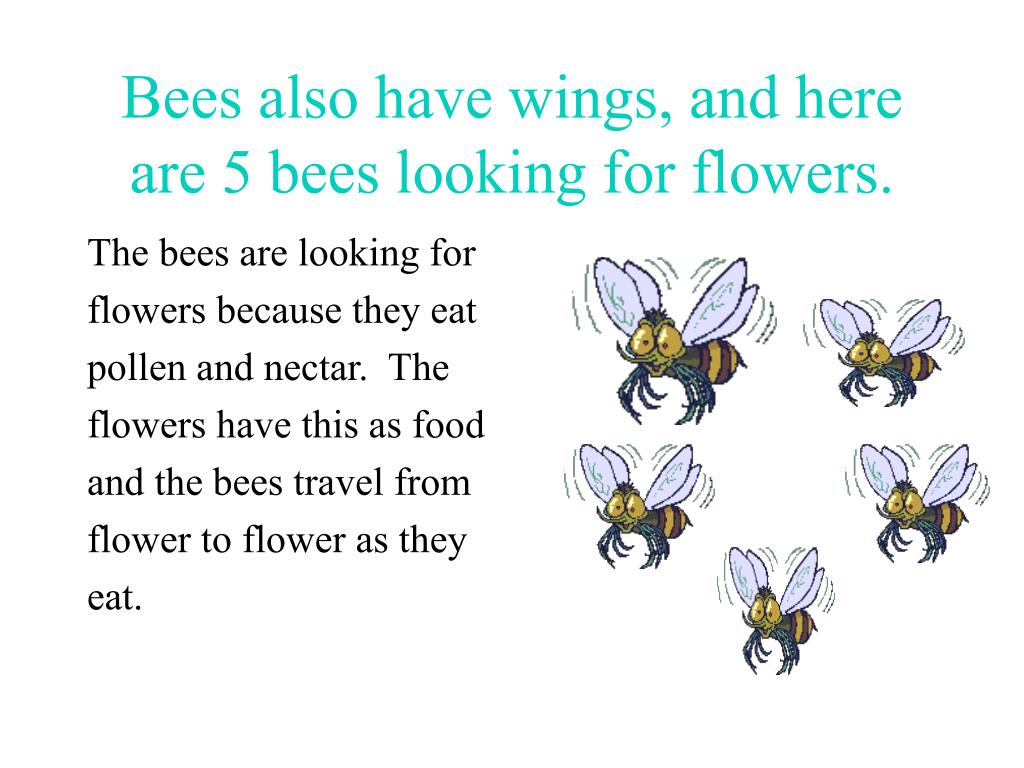 Bees also have wings, and here are 5 bees looking for flowers.