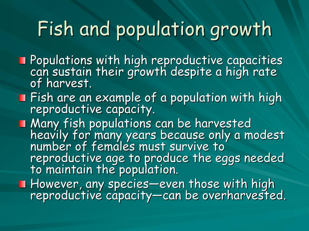 Fish and population growth