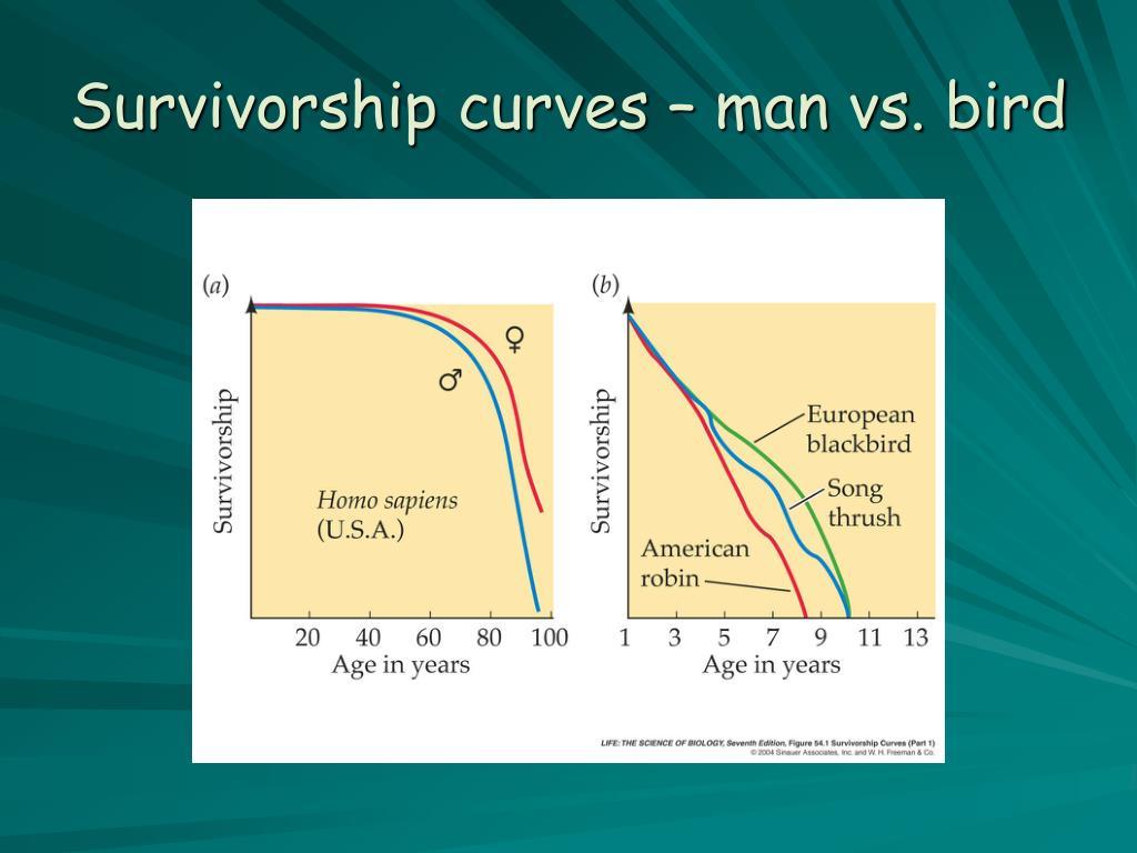 Survivorship curves – man vs. bird