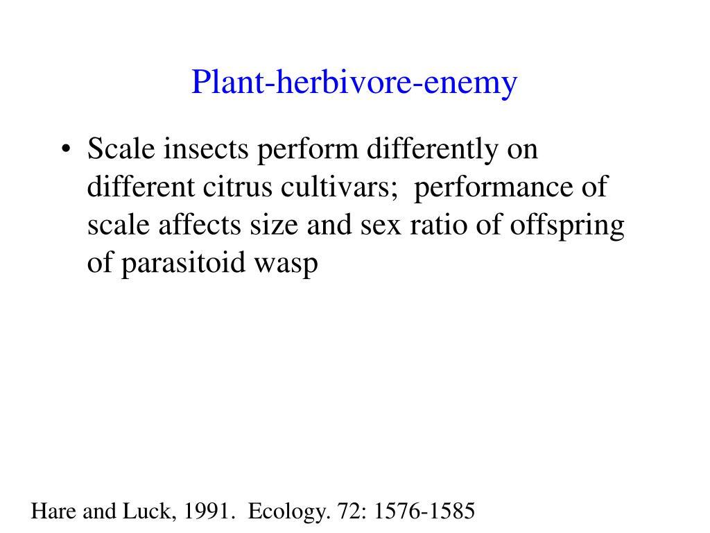 Plant-herbivore-enemy