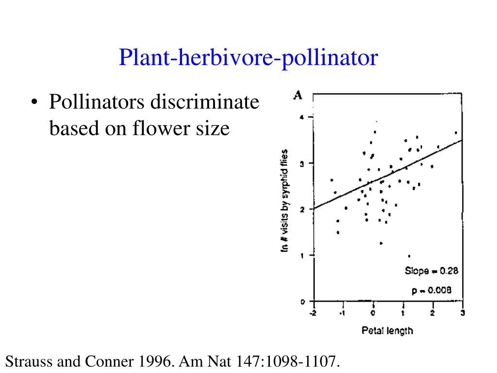 Plant-herbivore-pollinator