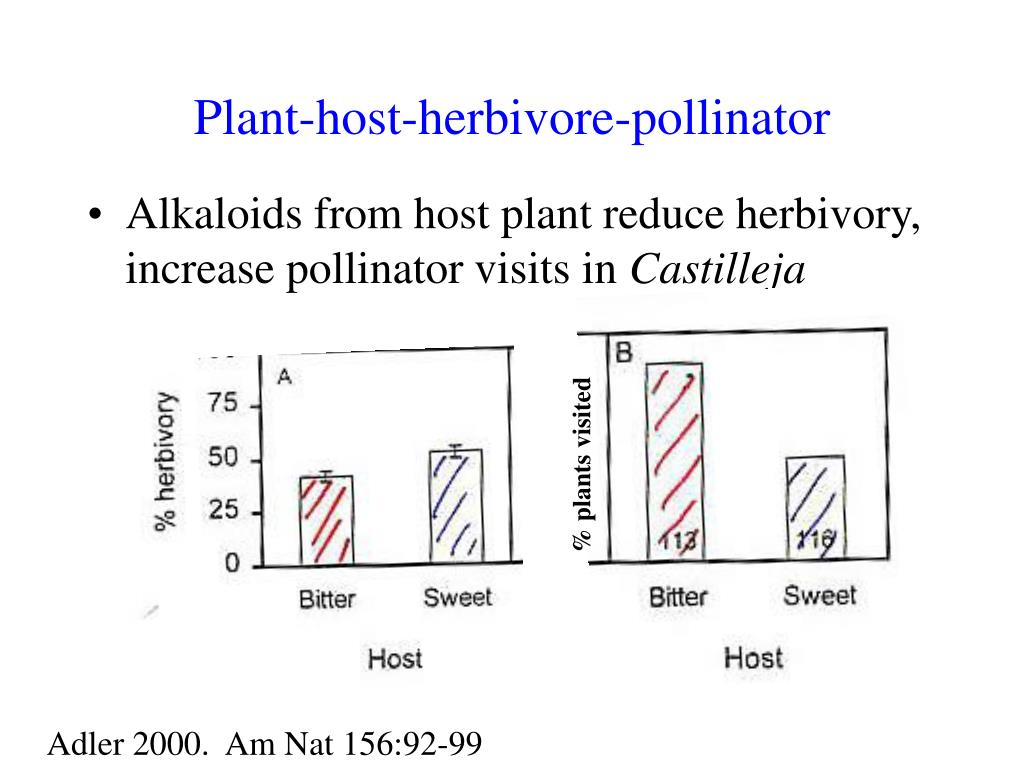 Plant-host-herbivore-pollinator