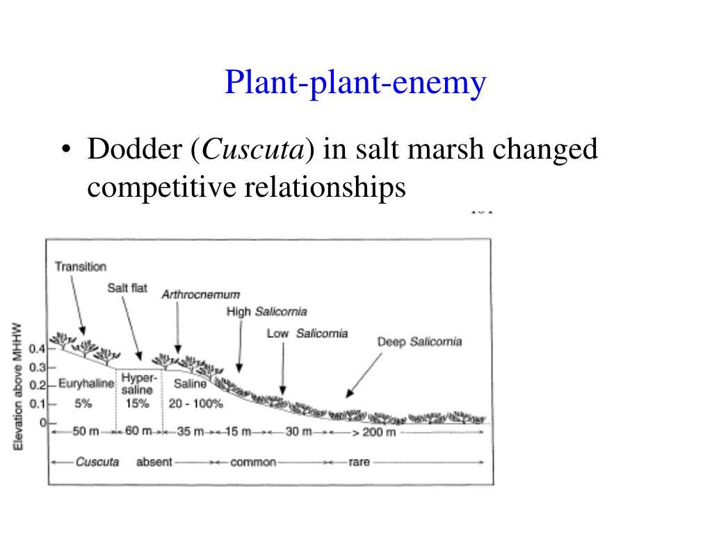 Plant-plant-enemy