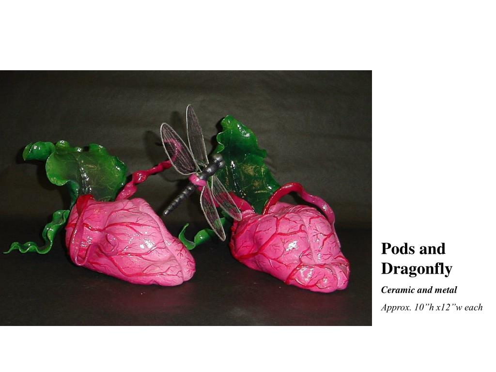 Pods and Dragonfly