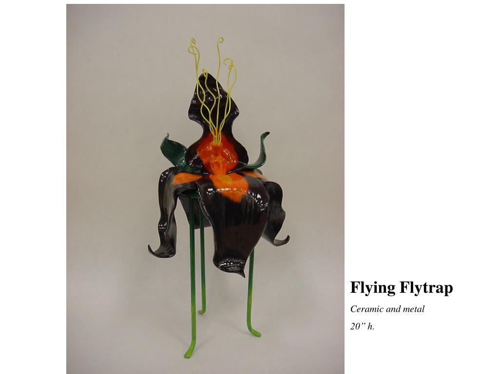 Flying Flytrap