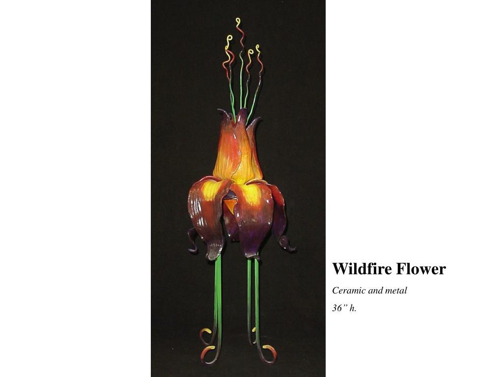 Wildfire Flower