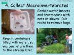 4 collect macroinvertebrates