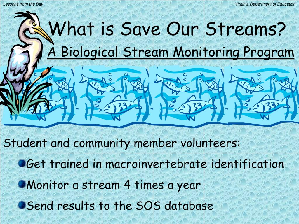 What is Save Our Streams?