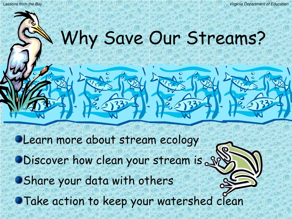 Why Save Our Streams?