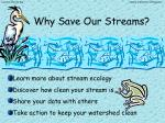 why save our streams