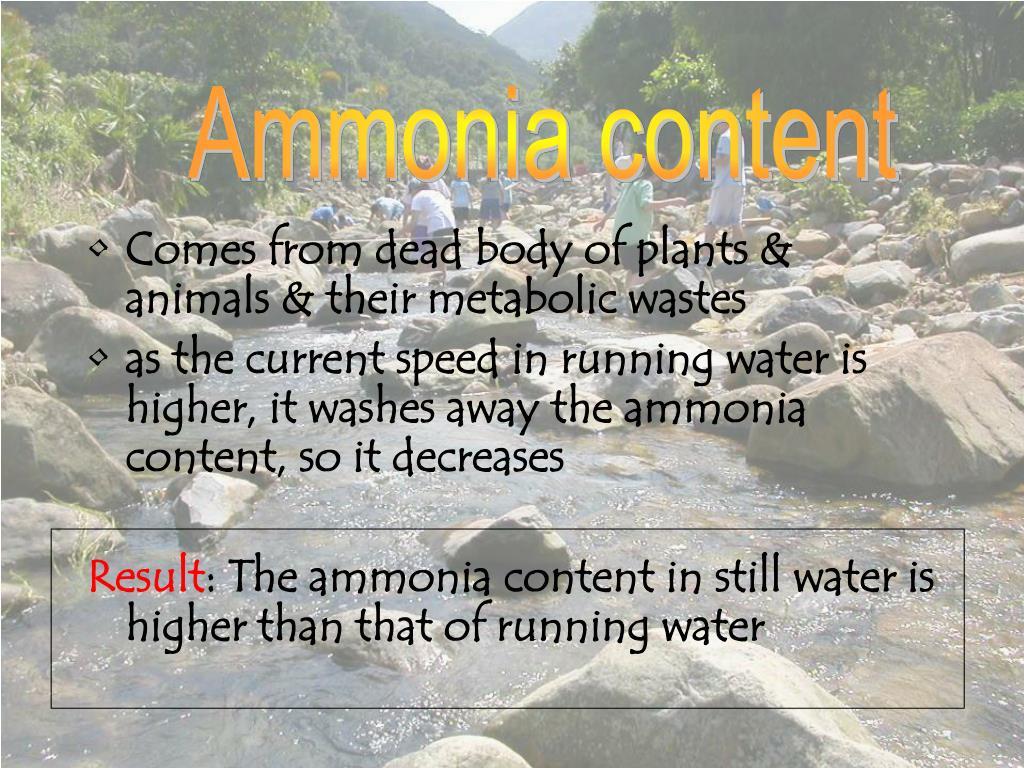 Ammonia content