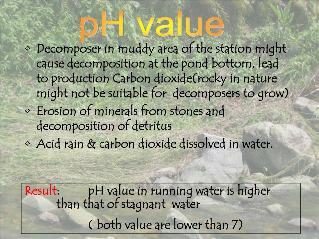 pH value