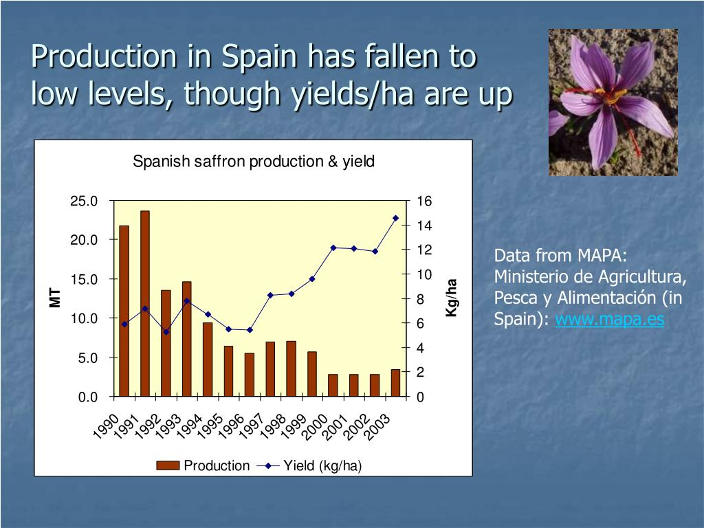 Production in Spain has fallen to low levels, though yields/ha are up